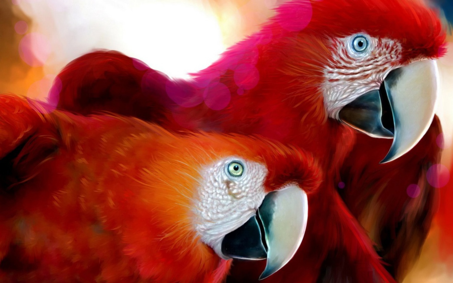 Red Macaws Wallpaper